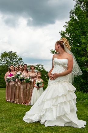 Wedding in Erie Pa